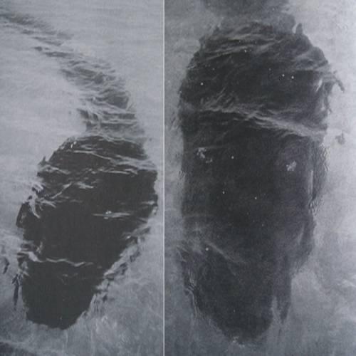 Робер Ле-Серрек сделал первые снимки морского змея