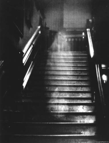Знаменитый снимок Коричневой Леди на лестниц