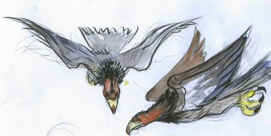 Две птицы на рисунке