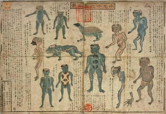 Японская книга о каппе