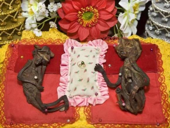 Буддийские реликвии в украшенной раке